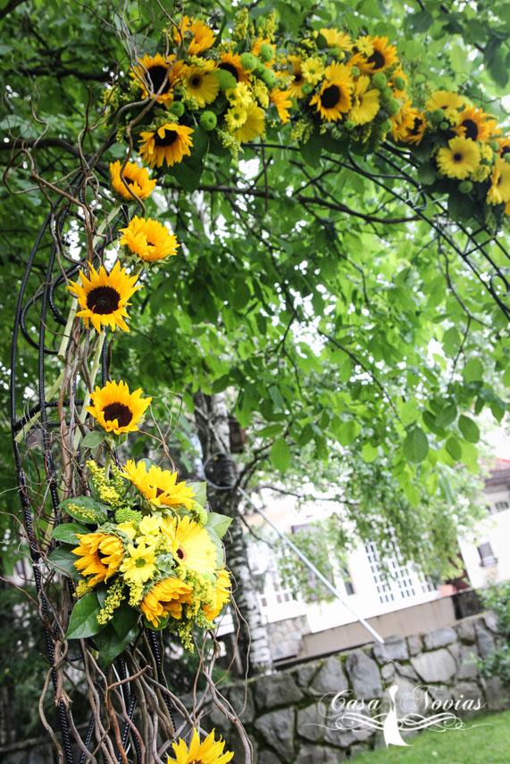 arcada-floarea-soarelui