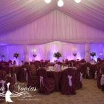 decor-nunta-cort-lumini1