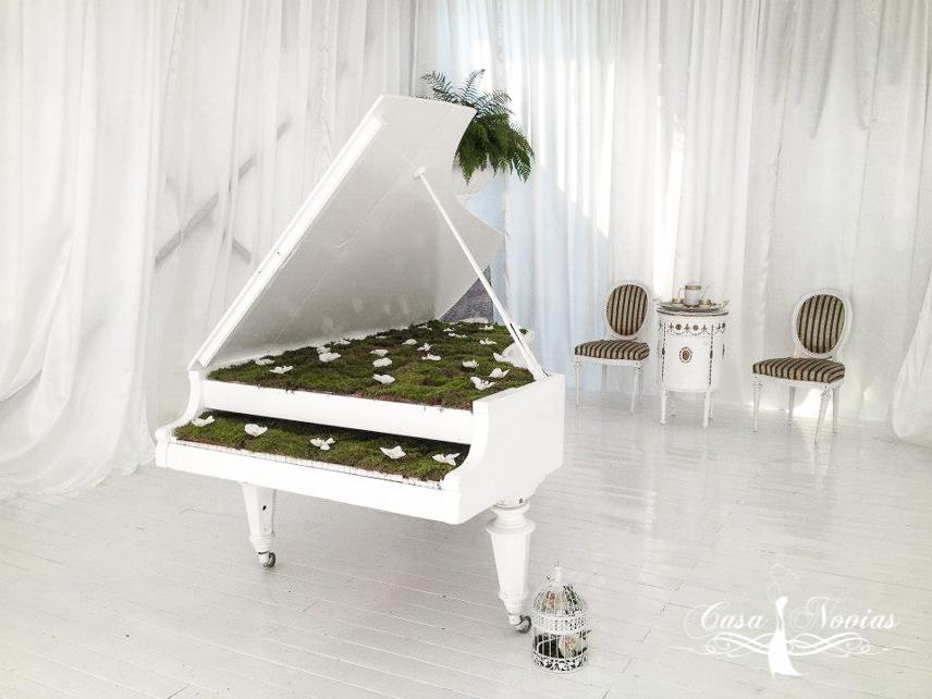 pian-alb-decorat-cu-muschi